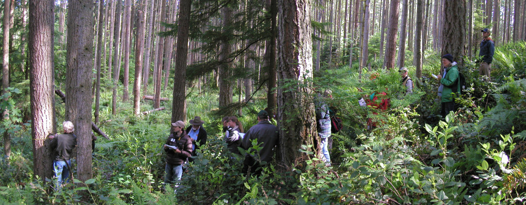 Northwest Natural Resource Group 24